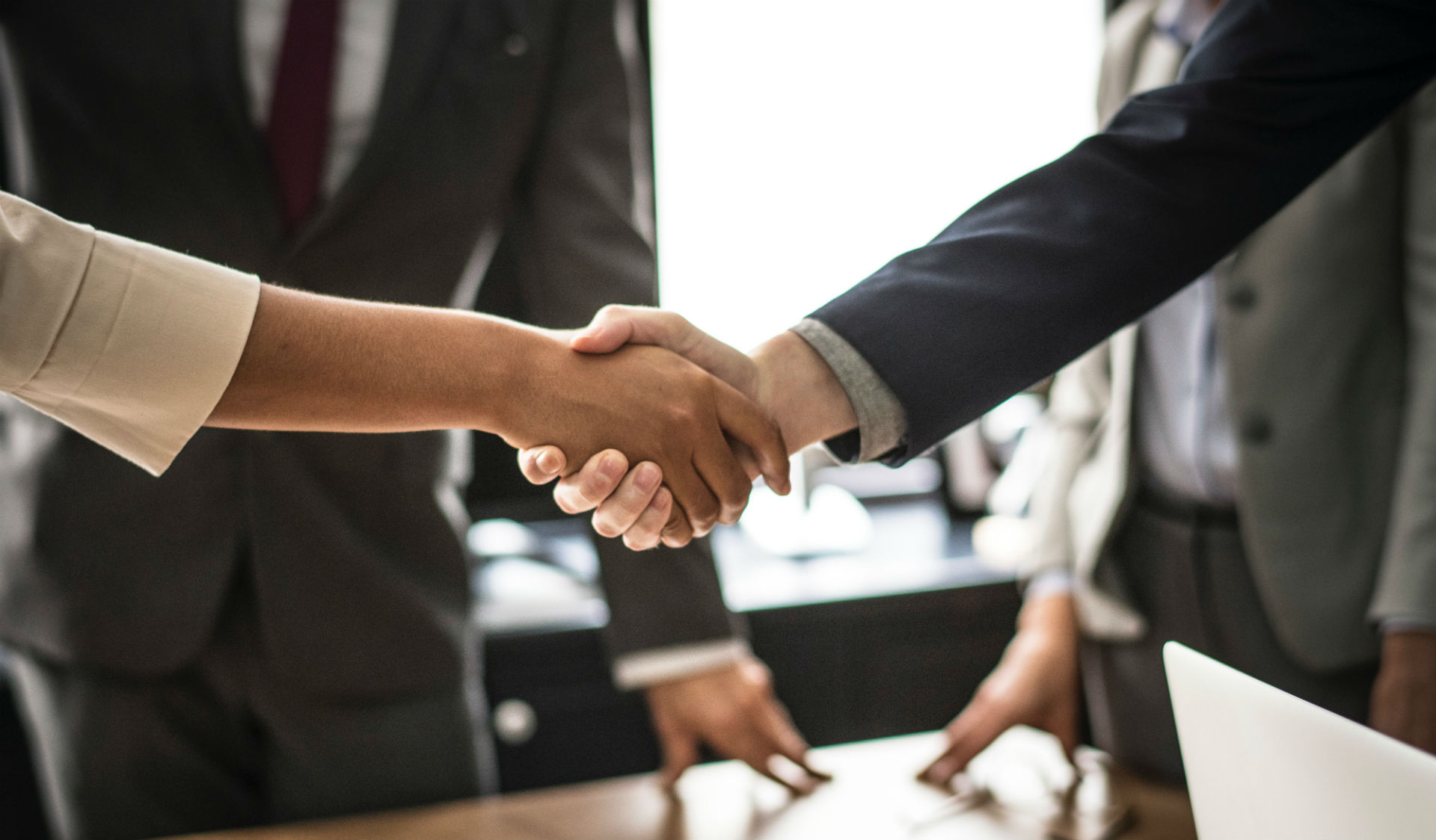 professionals shaking hands at a meeting